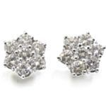 Pendientes orla o roseta de oro blanco 18k con 14 diamantes
