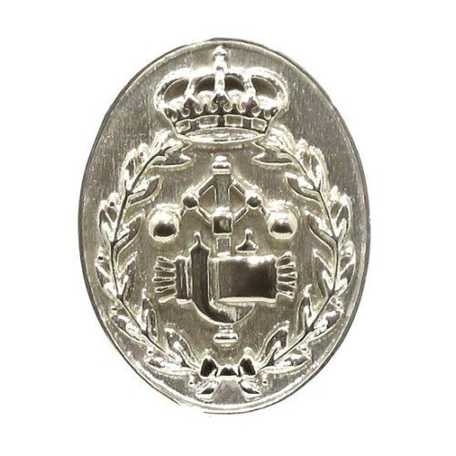 Insignia profesion ingeniero oval plata