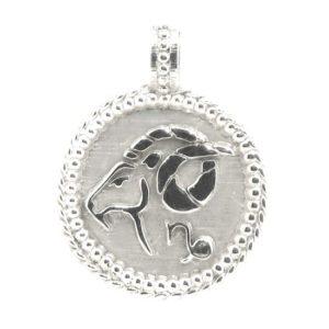 Medalla zodiaco capricornio 22mm plata